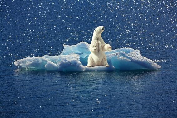 para 2050 sentiremos climas atipicos debido al cambio climatico 1