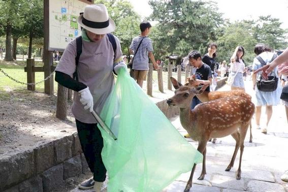 mueren ciervos al comer plastico que tiran los turistas en japon 2