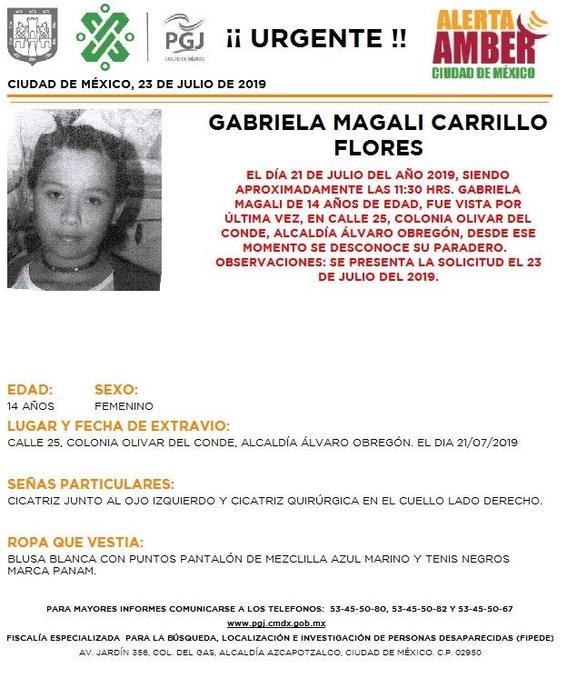 activan alerta amber para tres personas desaparecidas en alvaro obregon 2