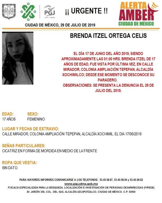 desaparecen tres adolescentes en cdmx uno de ellos guatemalteco 6