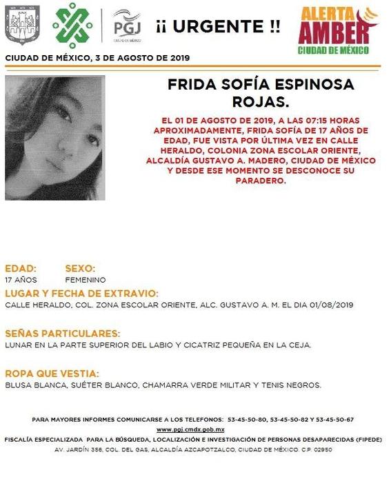 activan alerta amber para 15 menores desaparecidos en cdmx 2