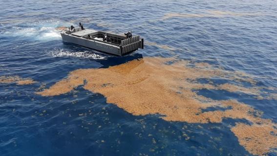 la secretaria de marina informo que el primer buque recolector de sargazo estara listo en octubre y en enero los tres siguientes 1