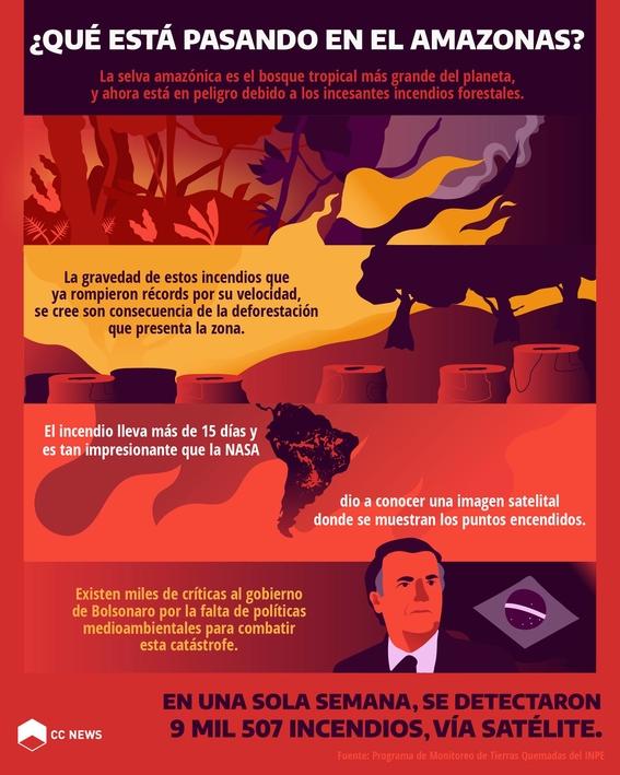 entre 20 y 40 anos tardara el amazonas en recuperarse tras incendio 2