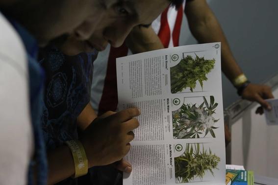 la suprema corte de justicia de la nacion ordeno en agosto a la secretaria de salud que publicara recomendaciones para el uso medicinal del canna 2