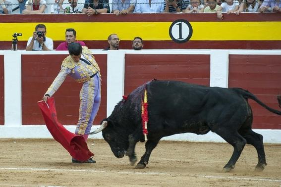 con consulta ciudadana amlo plantearia prohibir las corridas de toros 2