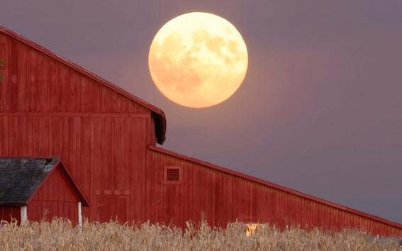 los cientificos indican que esta luna es buena para aquellas personas que se dedican a la cosecha en el mundo 1