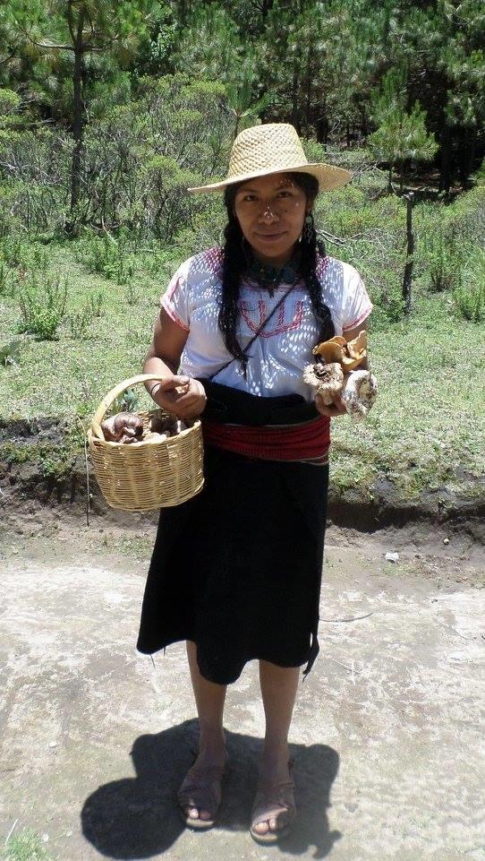 irma galindo desaparicion oaxaca 2
