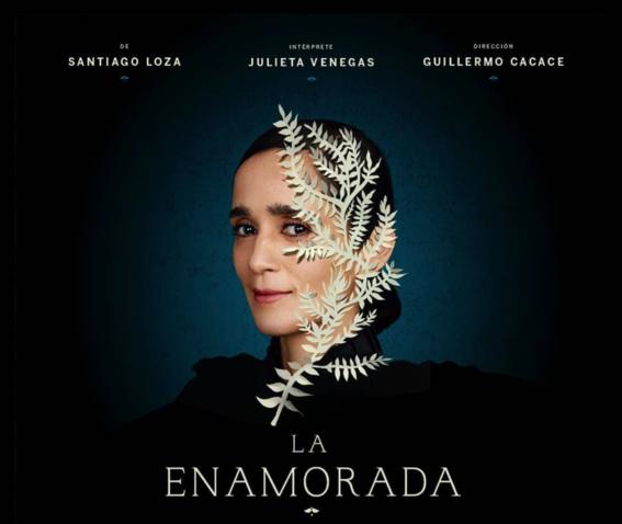julieta venegas habla sobre la violencia de genero en mexico 3