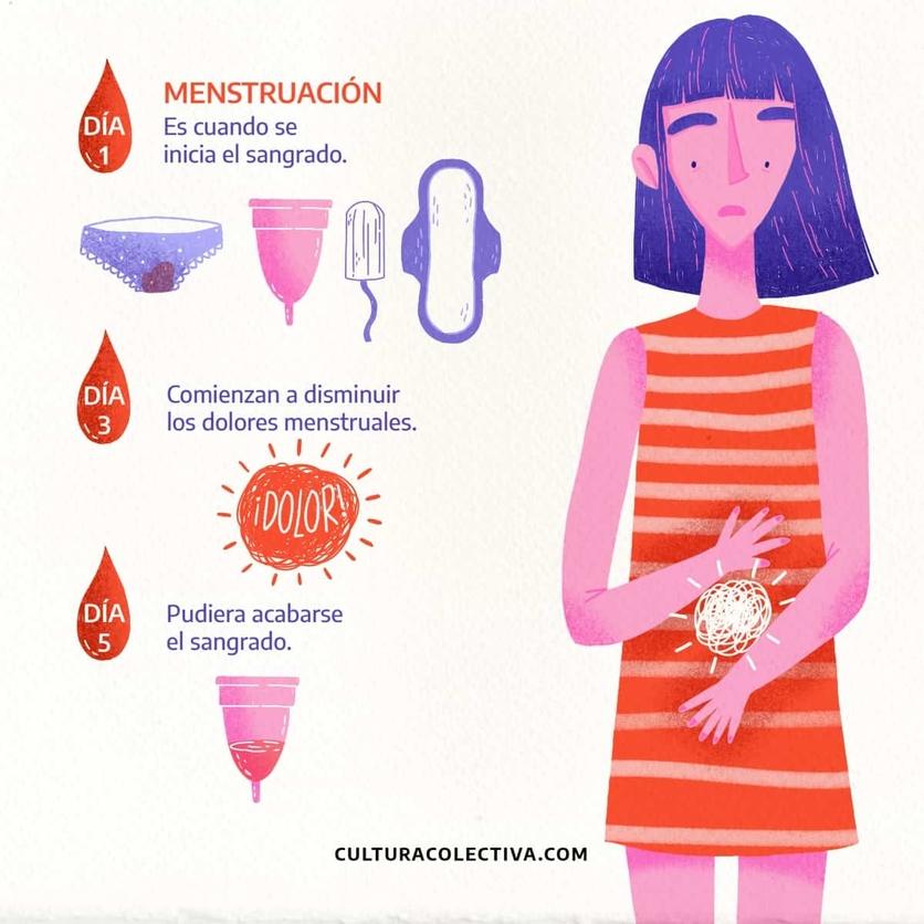 Calendario Menstrual De 31 Dias.Dia A Dia Que Sucede Con El Cuerpo De Una Mujer Durante El
