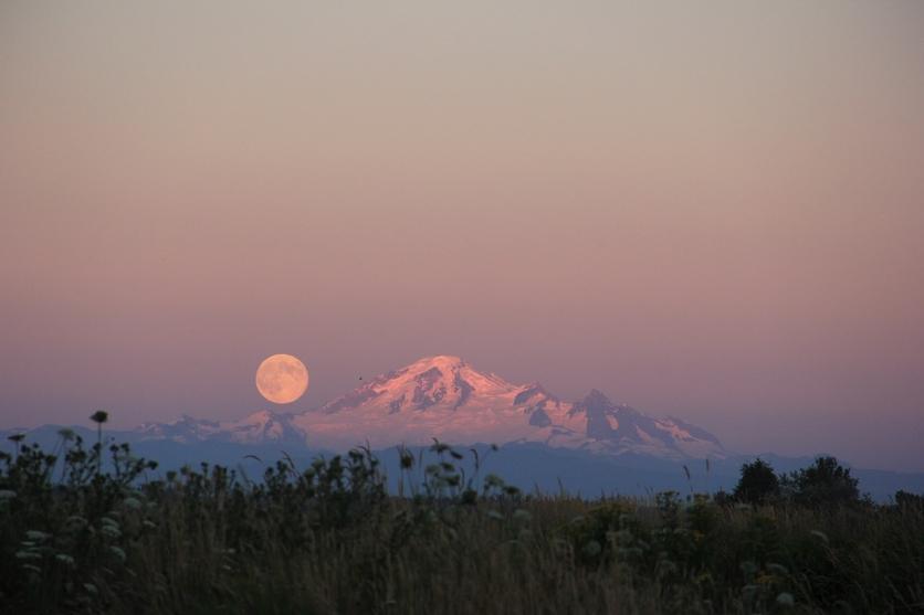 Qué es la Luna rosa de este viernes y por qué no deberías tomártela muy en serio 1