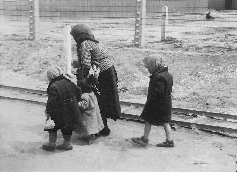 Cómo se clasificaban los prisioneros en un campo de concentración nazi 3