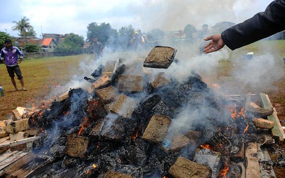 Queman tres toneladas de mariguana y drogan a un pueblo en Indonesia