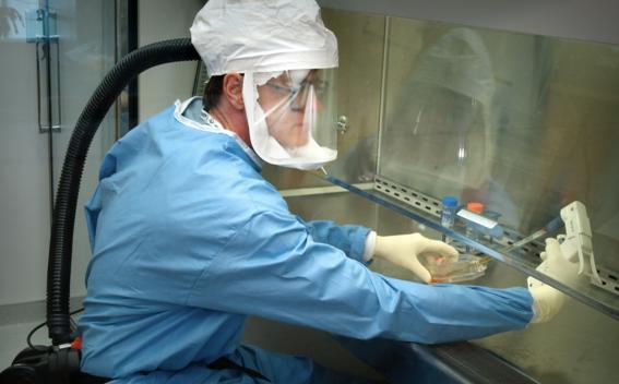 medidas para prevenir nuevo coronavirus virus wuham en mexico 2