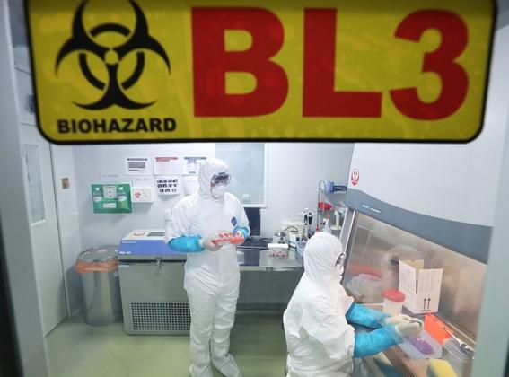 el pais se tiene una capacidad limitada en virologia debido a que hay un numero muy reducido de investigadores esta materia de virus 1