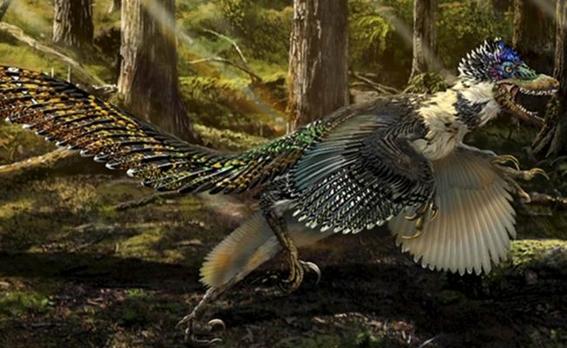 el nuevo dinosaurio emplumado que vivio en nuevo mexico hace 67 millones de anos es una de las ultimas especies de raptores sobrevivientes conoci 1