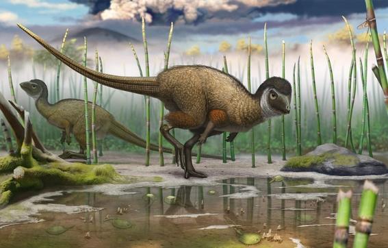 el nuevo dinosaurio emplumado que vivio en nuevo mexico hace 67 millones de anos es una de las ultimas especies de raptores sobrevivientes conoci 2