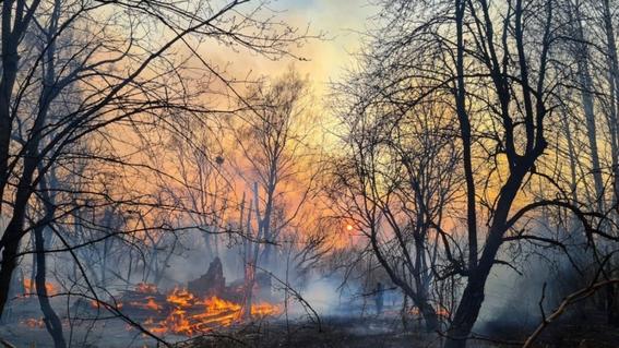 incendios chernobyl incendios en chernobyl 2