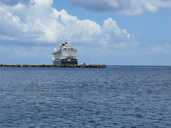 tripulantes cruceros pandemia 3