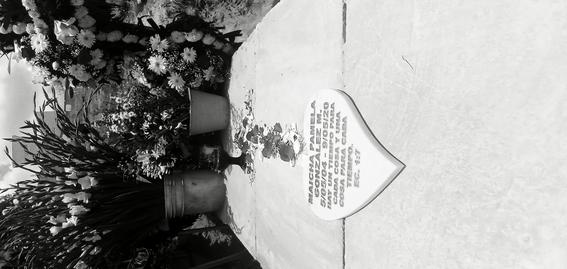 la columna rota feminicidio maicha pamela gonzalez matilde 2