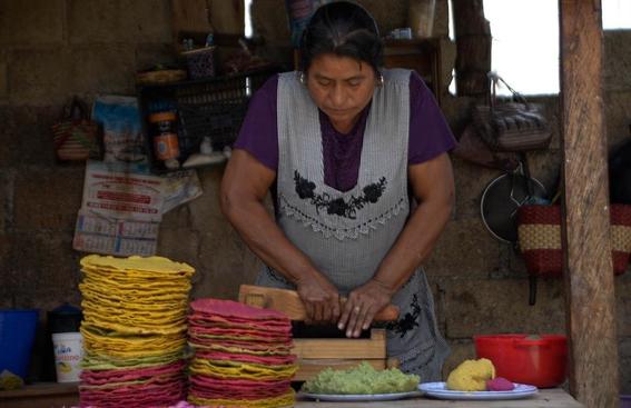 teopisca tortillas de colores 2