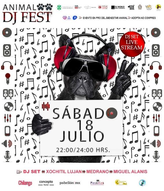 animal dj fest 2020 el evento virtual para adoptar perritos rescatados en el metro 2