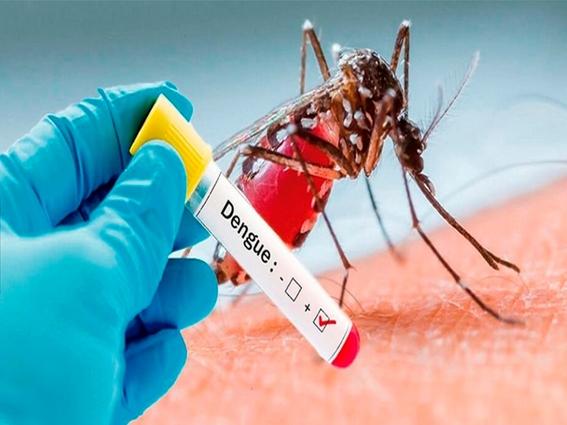 aumentan al doble los casos de dengue en jalisco 2
