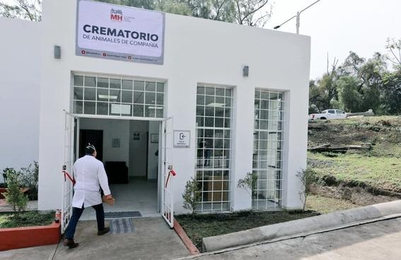 abren el primer crematorio de mascotas en la cdmx 1