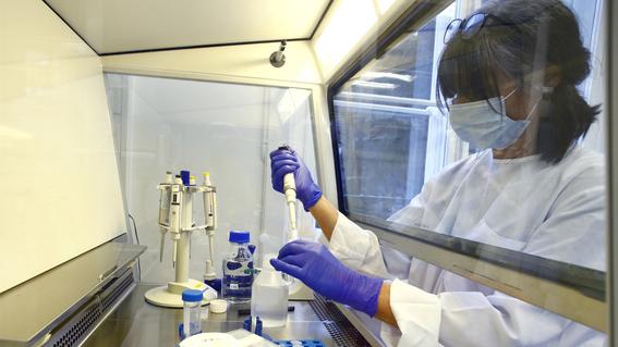 ¿cuanto costara la vacuna contra covid19 desarrollada por moderna 1