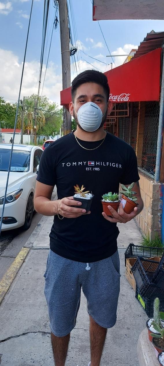 maria fernanda nina vende plantas cancer 2