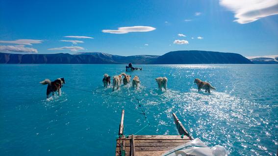 un estudio revela que el derretimiento de los glaciares en groenlandia ha llegado a un punto de inflexion y supera con creces la capa de nieve de 1