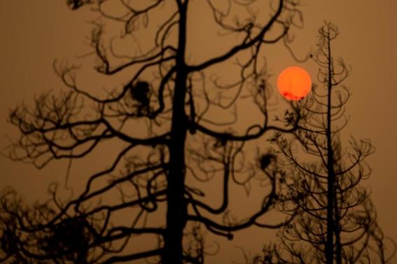 cielo naranja california incendios humo neblina 2