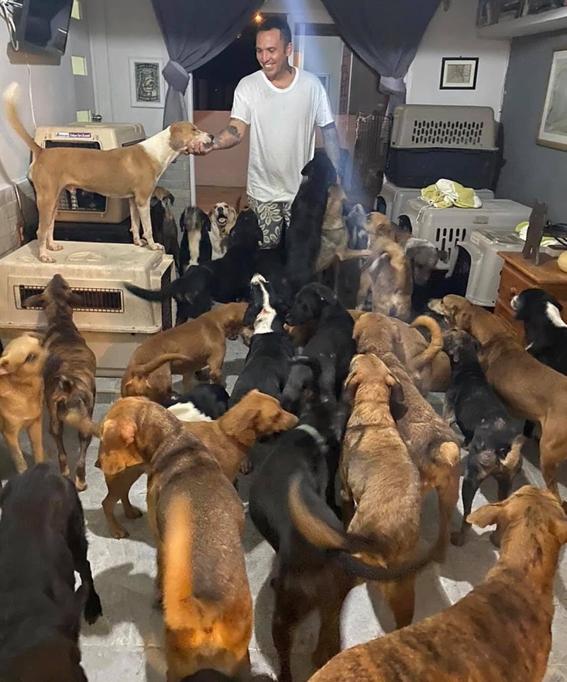 rescatan a perros hucaran delta 1