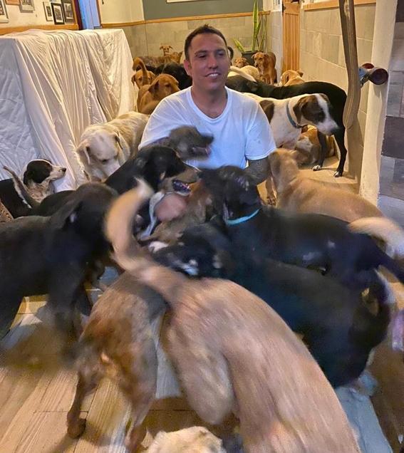rescatan a perros hucaran delta 2