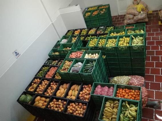 consumo de alimentos con vitaminas a e y d alivian males respiratorios 2