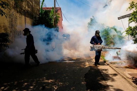 ¿cual es la situacion del dengue en mexico 3