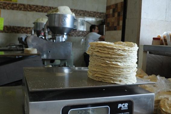 subira 1 peso el kilo de tortilla en diciembre 1