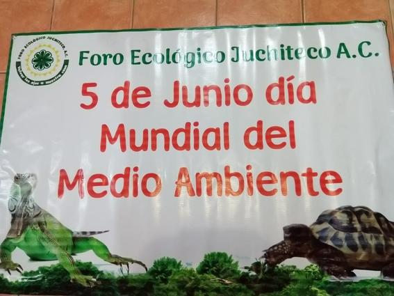 robo iguanas juchitan oaxaca 2