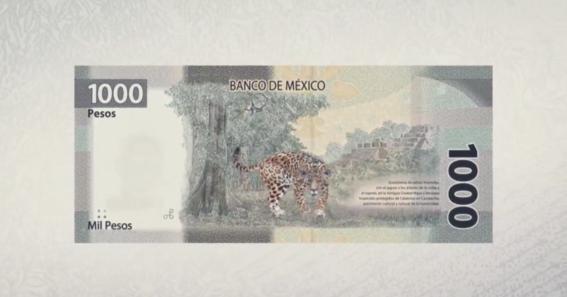 ¿como es el nuevo billete de mil pesos 4