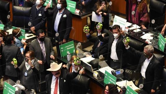 aprobacion de la ley que regula el cannabis en mexico 2