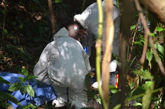 identifican 113 cuerpos en una fosa clandestina en el estado de jalisco 1