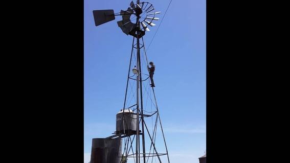 la historia del chico que se sube a un molino para conectarse a internet y mandar la tarea 1