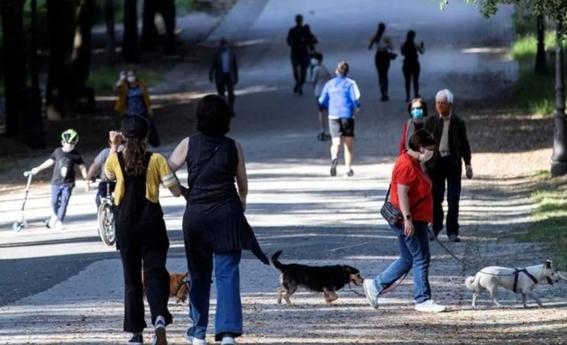 reportan tres primeros casos de covid19 en animales en mexico 2
