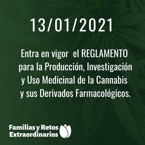 mexico publica reglamento de marihuana medicinal 1