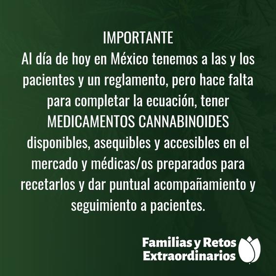 mexico publica reglamento de marihuana medicinal 4