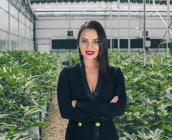 regulacioncannabispodriasalvareconomiamexicocovid 4