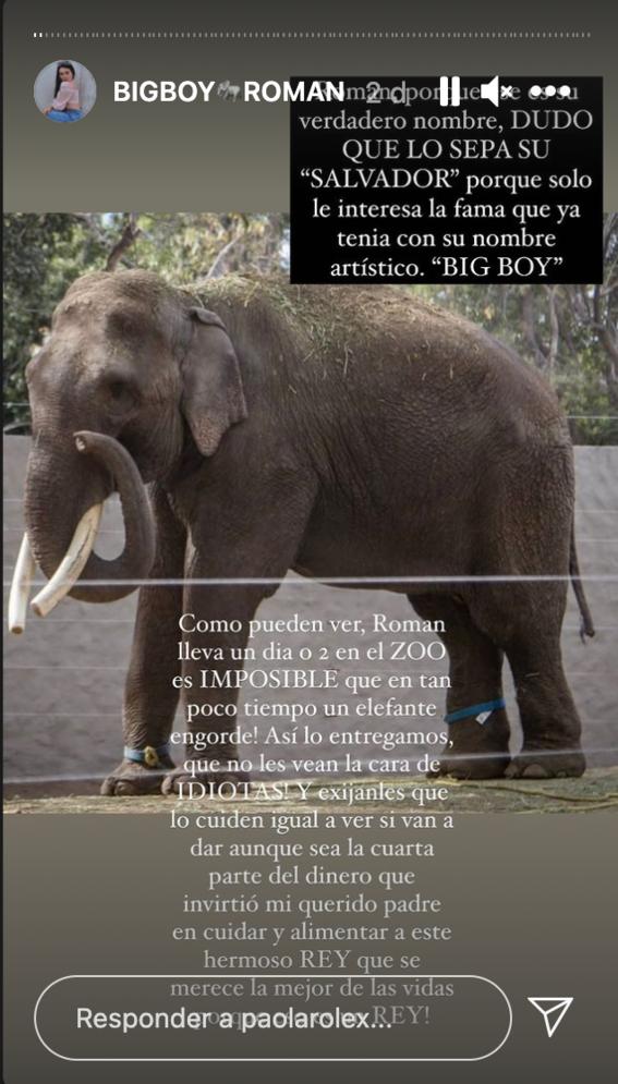 acusan arturo islas armar circo presunto rescate elefante big boy 3