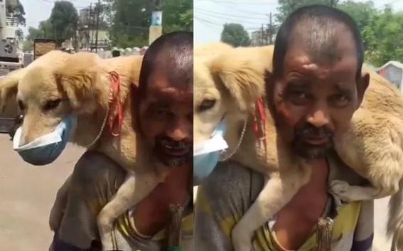 video hombre se quita cubrebocas para proteger a perro 1