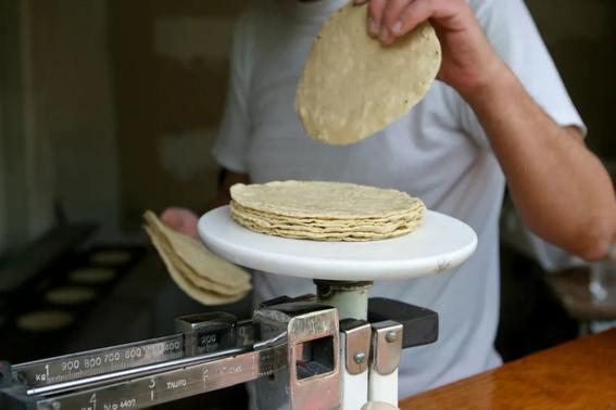 precio del kilo de tortilla podria subir hasta 25 pesos 1