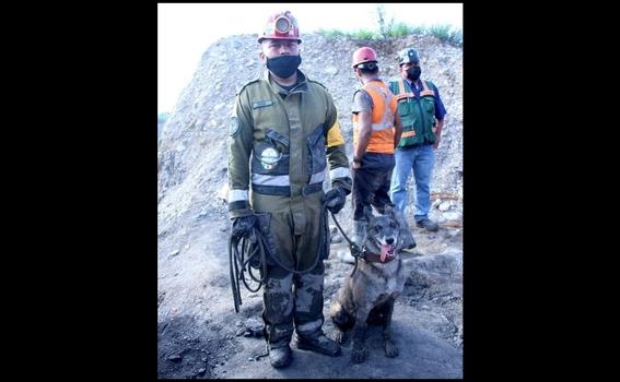 perritos mineros coahuila mina muzquiz 3