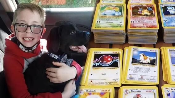 nino salva perro cartas pokemon 2
